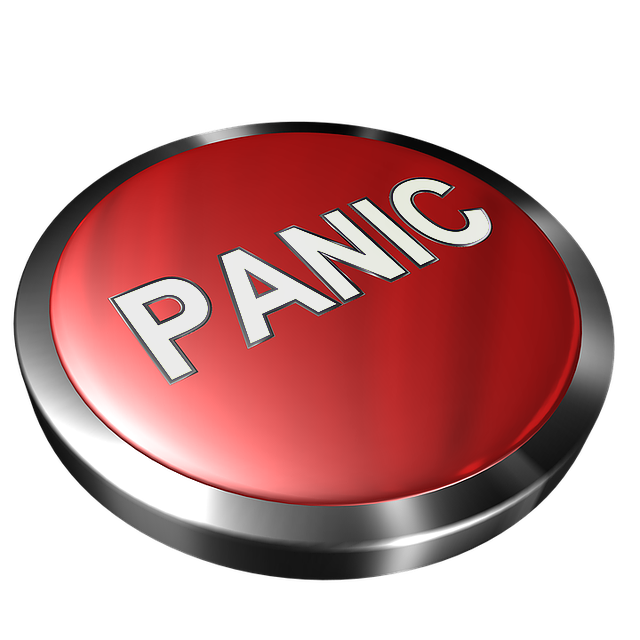 Improving vehicle safety with Panic button